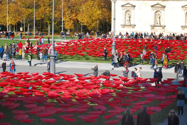 Never again - Mohnblumen auf dem Königsplatz für den Frieden