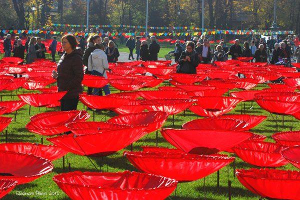 Mohnblumen auf dem Königsplatz mit Besuchern